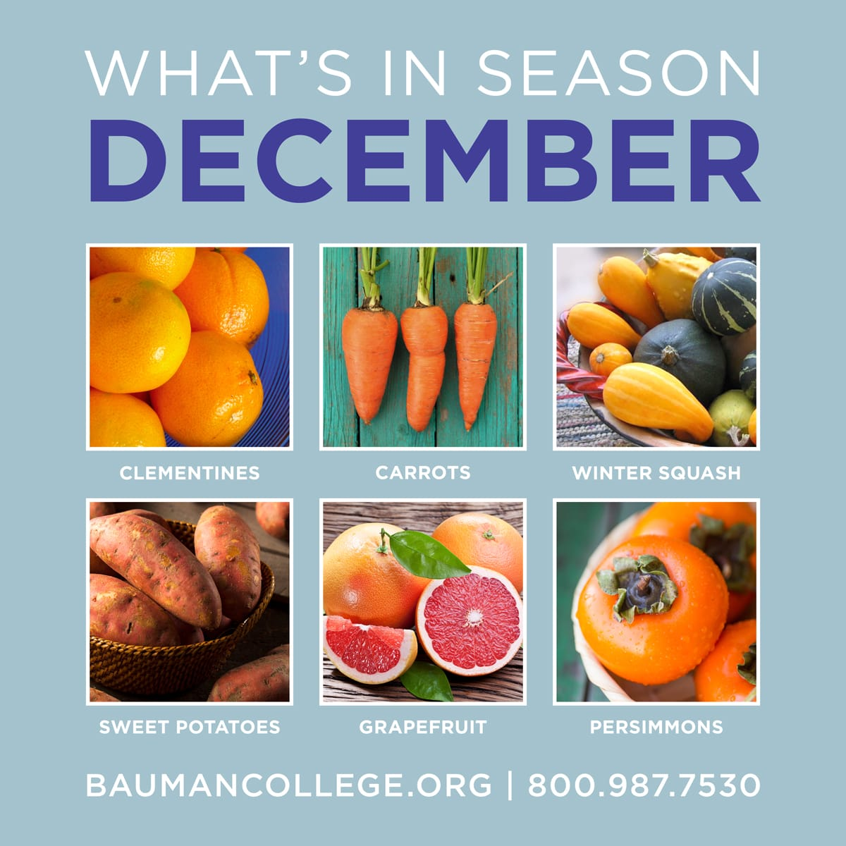 whats_in_season_dec_1200x1200