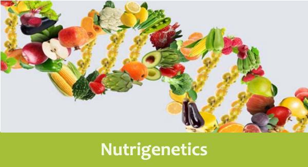 Nutrigenetics - Personalizing Nutrition Using Genetics